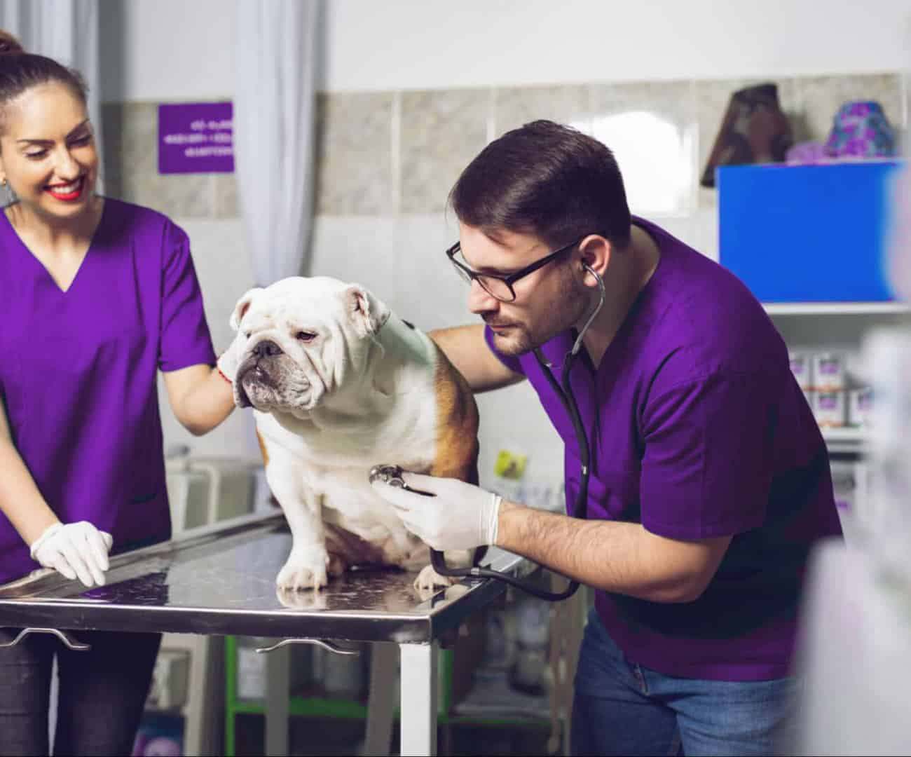 Veterinary-Medicine-Students -with-Dog-1