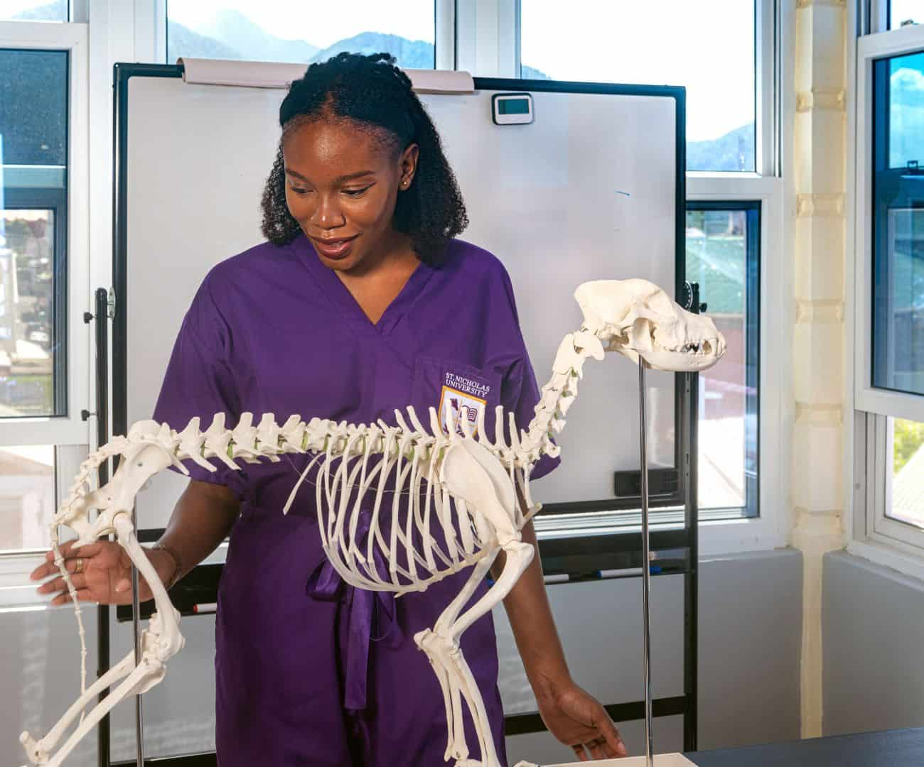 veterinary_student_with_dog_skeleton_1